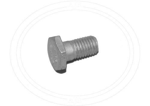 Rear brake anchor bolt