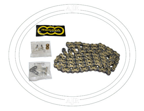 REGINA 520 135GPMV chain 112 links